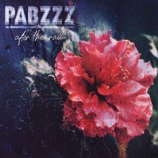 Pabzzz - After The Rain Вініл