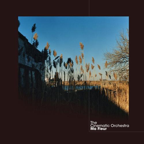 The Cinematic Orchestra – Ma Fleur Вініл