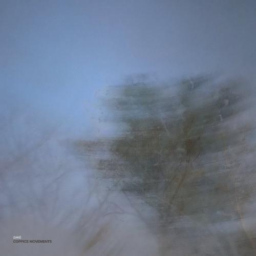 zakè – Coppice Movements Вініл