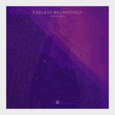 Endless Melancholy - Seamless Вініл